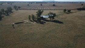 Rural / Farming commercial property for sale at LOT 1 NAPIER ROAD Lockhart NSW 2656