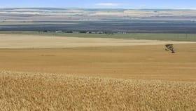 Rural / Farming commercial property for sale at 458 Borlace Road Port Arthur SA 5552