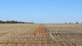 Rural / Farming commercial property for sale at ' Glenroy' Nyngan NSW 2825