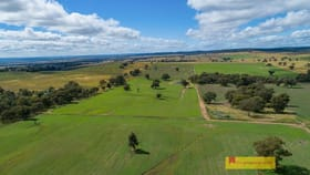 Rural / Farming commercial property for sale at 2610 Castlereagh Highway Mudgee NSW 2850