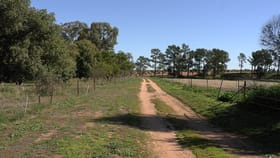 Rural / Farming commercial property for sale at 199 Innisvale Road Euroley NSW 2700