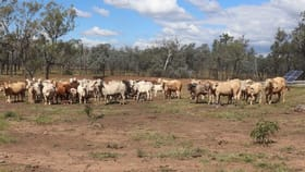 Rural / Farming commercial property for sale at L 17, 55 & 62 Old Burrandowan Road, Diamondy Durong QLD 4610