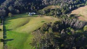 Rural / Farming commercial property for sale at 100 Schultz Road, Billys Creek Dorrigo NSW 2453