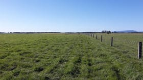 Rural / Farming commercial property for sale at 8398 Glenelg Highway Warrayure VIC 3301