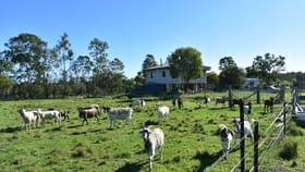 Rural / Farming commercial property for sale at 53 Keenes Rd Bauple QLD 4650