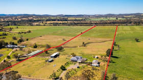 Rural / Farming commercial property for sale at 598 Gloucester Road Killawarra NSW 2429