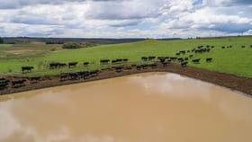 Rural / Farming commercial property for sale at 241 Hillcrest Road Taralga NSW 2580