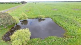 Rural / Farming commercial property for sale at Connewarren Lane Mortlake VIC 3272