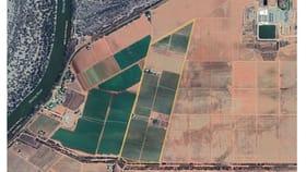 Rural / Farming commercial property for sale at 3794B Hattah Robinvale Road Wemen VIC 3549