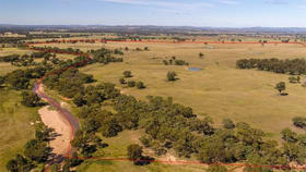 Rural / Farming commercial property for sale at 681 Barneys Reef Rd Gulgong NSW 2852