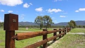 Rural / Farming commercial property for sale at 61 & 93 East Mary Road, Maryfarms Mount Carbine QLD 4871
