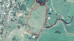 Rural / Farming commercial property for sale at Lot 1 Old Coramba Rd Dorrigo NSW 2453