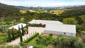 Rural / Farming commercial property for sale at 1335 Pinnacle Road Orange NSW 2800