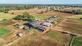 Rural / Farming commercial property for sale at 16-18L Angle Road Dubbo NSW 2830