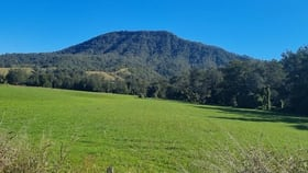 Rural / Farming commercial property for sale at 789 Lynches Creek Road Lynchs Creek NSW 2474