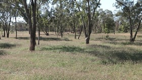 Rural / Farming commercial property for sale at 0 Tartulla Mitchell QLD 4465