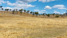 Rural / Farming commercial property for sale at 63 Seibenhausen Road Goomeri QLD 4601