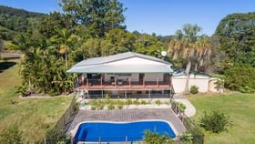 Rural / Farming commercial property for sale at 220 Wilsons Pocket Road Wilsons Pocket QLD 4570