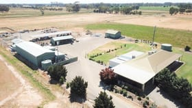 Rural / Farming commercial property for sale at Congupna VIC 3633