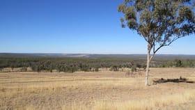 Rural / Farming commercial property for sale at Lot 29 Burundah Mt Estate Warialda NSW 2402