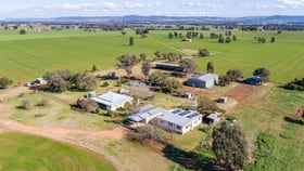 Rural / Farming commercial property for sale at 104 SELECTION ROAD Cowra NSW 2794