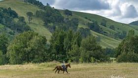 Rural / Farming commercial property for sale at 1111 Glendonbrook Road Glendon Brook NSW 2330