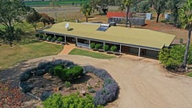 Rural / Farming commercial property for sale at 9897 Oxley Highway Gunnedah NSW 2380