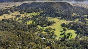 Rural / Farming commercial property sold at 443 Bowles Lane Rylstone NSW 2849