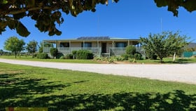 Rural / Farming commercial property for sale at 21 Putta Bucca Road Mudgee NSW 2850