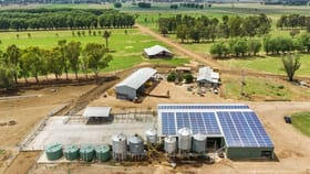 Rural / Farming commercial property for sale at 139 Bridge Road Mcmillans VIC 3568