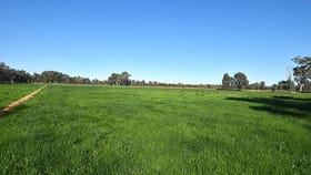 Rural / Farming commercial property for sale at 700 Madill Road Undera VIC 3629