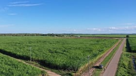 Rural / Farming commercial property for sale at 386 Anabranch Road Jarvisfield QLD 4807