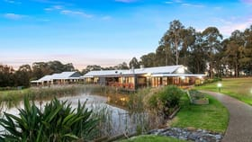 Rural / Farming commercial property for sale at 609 McDonalds Road Pokolbin NSW 2320