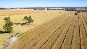 Rural / Farming commercial property for sale at 521 Grong Grong River Road Grong Grong NSW 2652