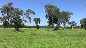 Rural / Farming commercial property for sale at 874 Cape Cleveland Road Cape Cleveland QLD 4810