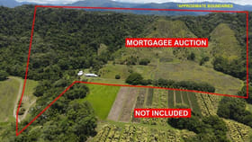 Rural / Farming commercial property for sale at 48 Beatrice Rd Stewart Creek Valley QLD 4873