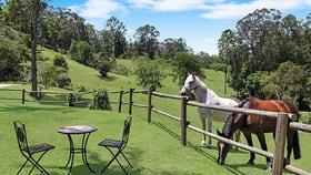 Rural / Farming commercial property for sale at 49 Gattera Road Landsborough QLD 4550