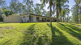 Rural / Farming commercial property for sale at 154 Pendennis Tamborine QLD 4270