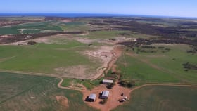 Rural / Farming commercial property for sale at 621 Hatch Road Bowes WA 6535