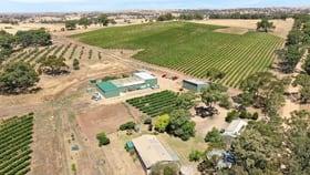 Rural / Farming commercial property for sale at 82 Koop Creek Road (Springton Hills Wines) Springton SA 5235