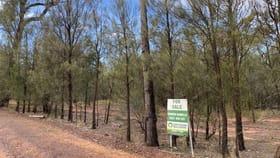 Rural / Farming commercial property for sale at Lot 2 Sandy Creek Road Kogan QLD 4406