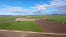 Rural / Farming commercial property for sale at 182 Homestead Road Fredericksfield QLD 4806