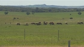 Rural / Farming commercial property for sale at 1015 Water Supply Road Dongara WA 6525