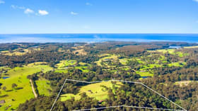 Rural / Farming commercial property for sale at 233 Wagonga Scenic Drive Narooma NSW 2546
