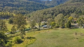 Rural / Farming commercial property for sale at 2850 Nerang Murwillumbah Road Natural Bridge QLD 4211