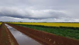 Rural / Farming commercial property for sale at 2263 Loddon River Road Leaghur VIC 3537