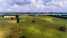 Rural / Farming commercial property for sale at Tallong NSW 2579