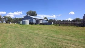 Rural / Farming commercial property for sale at 729 Wallangra Road Ashford NSW 2361