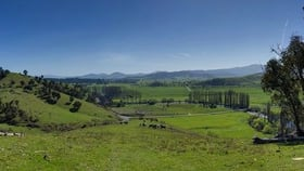 Rural / Farming commercial property for sale at Lot 3/818 Upper Murray Rd Towong Upper VIC 3707