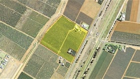 Rural / Farming commercial property sold at Farm 1685 Rankins Springs Road Griffith NSW 2680